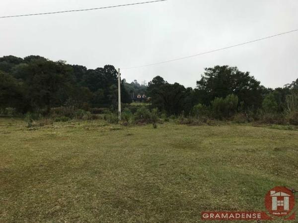 Imovel-area-de-terra-gramado-%c3%81r03332-31725
