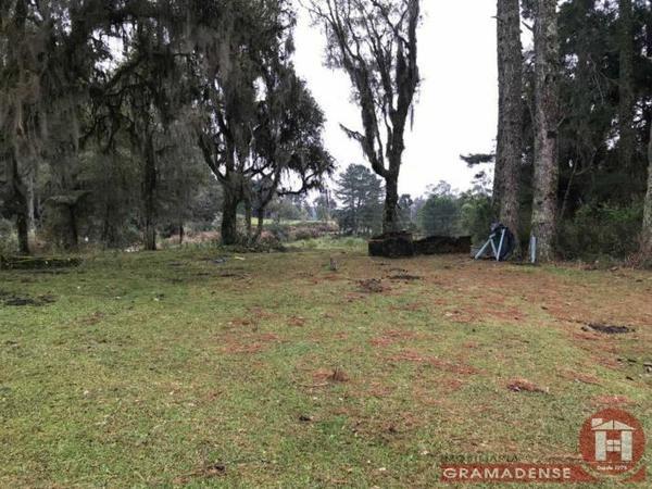 Imovel-area-de-terra-gramado-%c3%81r03332-31726