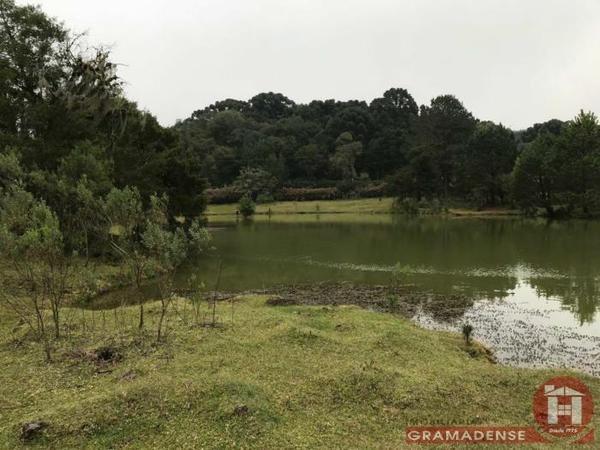 Imovel-area-de-terra-gramado-%c3%81r03332-31727