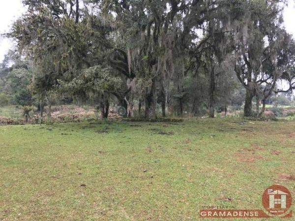 Imovel-area-de-terra-gramado-%c3%81r03332-31728