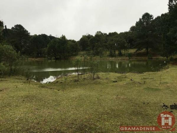Imovel-area-de-terra-gramado-%c3%81r03332-31731