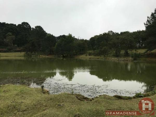 Imovel-area-de-terra-gramado-%c3%81r03332-31736
