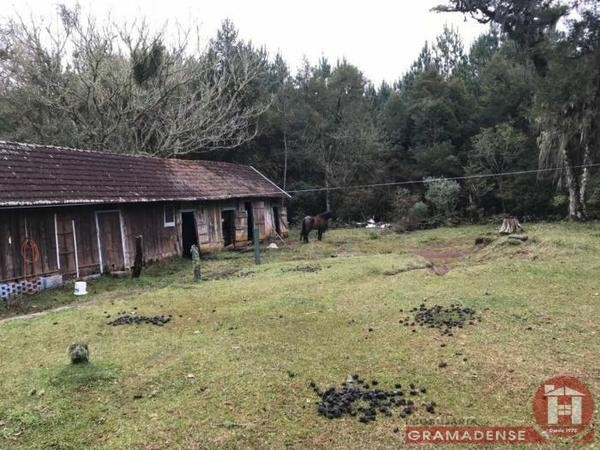 Imovel-area-de-terra-gramado-%c3%81r03332-31738