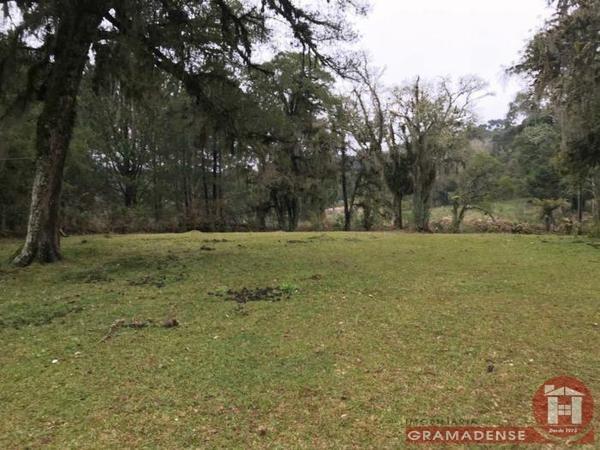 Imovel-area-de-terra-gramado-%c3%81r03332-31740