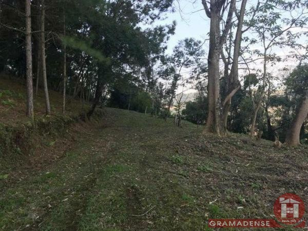 Imovel-area-de-terra-gramado-%c3%81r03747-41014