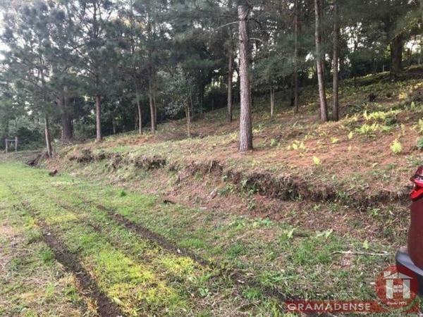 Imovel-area-de-terra-gramado-%c3%81r03747-41015