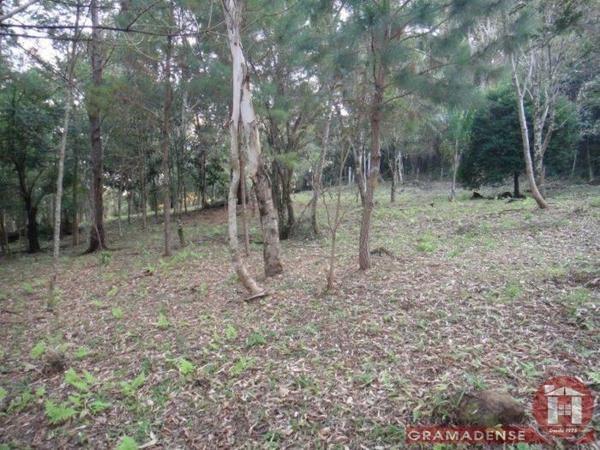 Imovel-area-de-terra-gramado-%c3%81r03747-41016