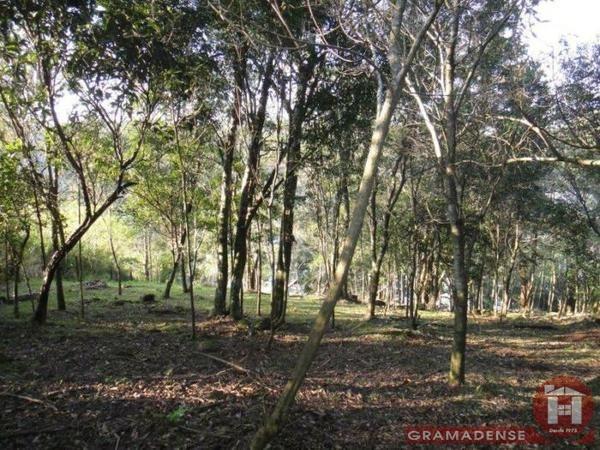 Imovel-area-de-terra-gramado-%c3%81r03747-41019