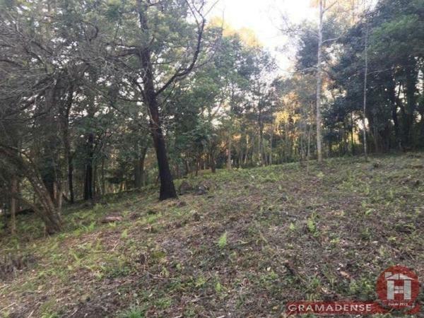 Imovel-area-de-terra-gramado-%c3%81r03747-41020