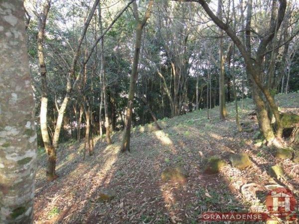 Imovel-area-de-terra-gramado-%c3%81r03747-41021