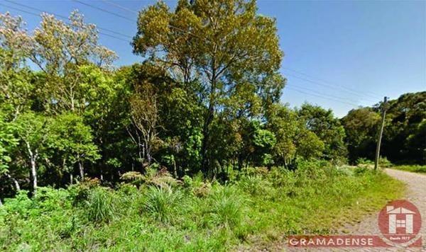 Imovel-terreno-canela-te00369-12157