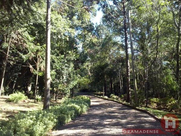 Imovel-terreno-gramado-te02317-43213