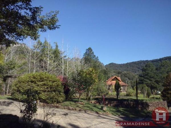 Imovel-terreno-gramado-te02317-43215