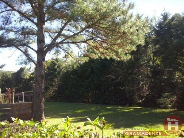 Imovel-terreno-gramado-te02317-43219