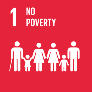 (a) SDG Goal 1 - No Poverty