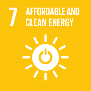 (g) SDG Goal 7 - Affordable and Clean Energy