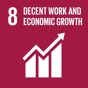 (h) SDG Goal 8 - Decent Work and Economic Growth