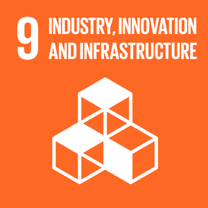 (i) SDG Goal 9 - Industry, Innovation and Infrastructure