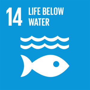 (n) SDG Goal 14 - Life Below Water