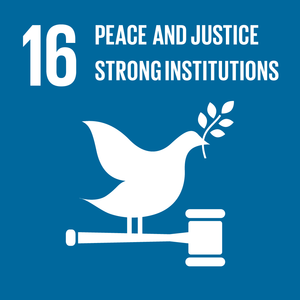 (p) SDG Goal 16 - Peace and Justice, Strong Institutions