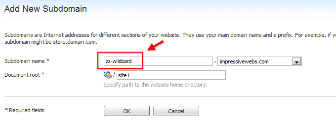 Choose a wildcard subdomain name