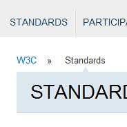 Should the Standard Property Be Omitted for Some CSS3 Features?
