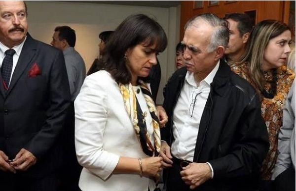 Resultado de imagen para Margarita Ríos-Farjat como jefa del Servicio de Administración Tributaria (SAT).
