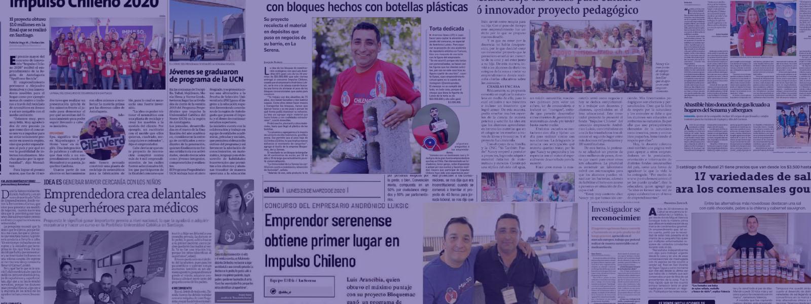 Emprendedores Linarenses son uno de los 100 ganadores de Impulso Chileno 2020 de Fundación Luksic