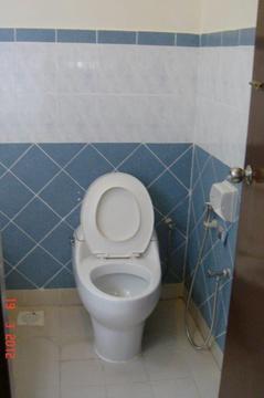 947 toilet