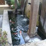 Water fountain   koi pond