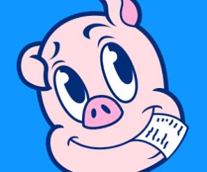 Receipt Hog, Cash back for Receipts Shopping