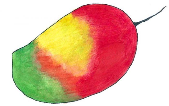 Sindhoora Mango
