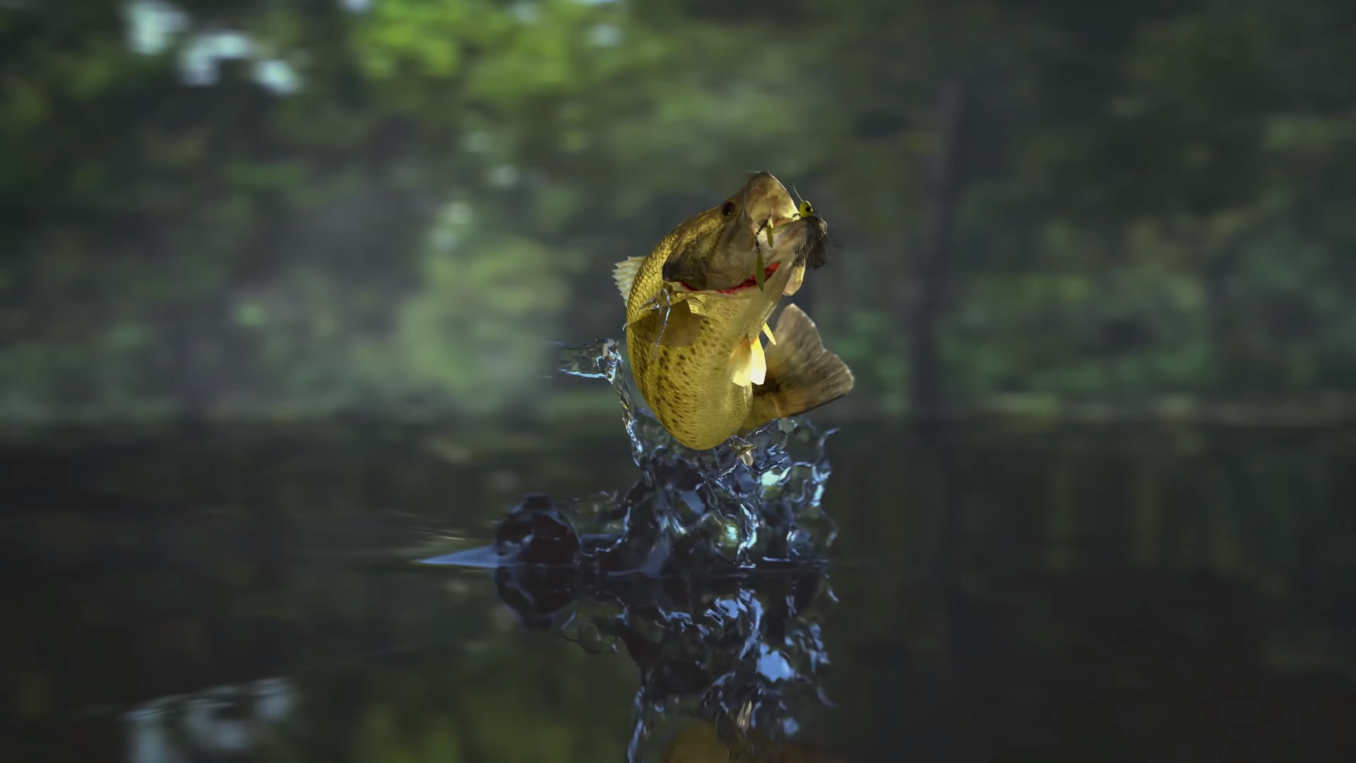 fishing planet 39 s rockin 39 ps4 trailer makes fishing look