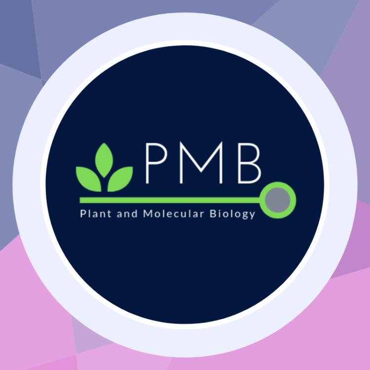 Pmb companey logo