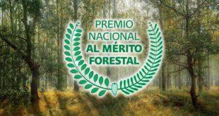 Resultado de imagen para convocatoria al Premio Nacional al Mérito Forestal 2018.