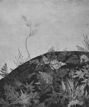 <p>D. Shterenberg,&nbsp;&#8220;Landcape&#8221;</p>