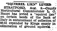 "<p>Included at the bottom of Haskin's article is a notice regarding the levying of the controversial ""Squirrel Lien"" with the purpose of funding the ""elimination of ground squirrels"" in Kings County (Brooklyn). We can only assume that the (non) death of Yiddish, Gaelic, and squirrels are intimately related.</p>"