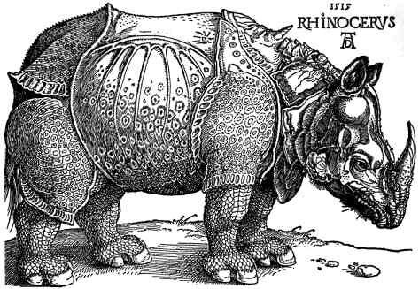"<p>Rhi­noc­er­os <a href=""https://wordpress.viu.ca/compassrose/closed-on-account-of-transformation-two-faced-humanity-in-ionescos-rhinoceros/"">via</a></p>"