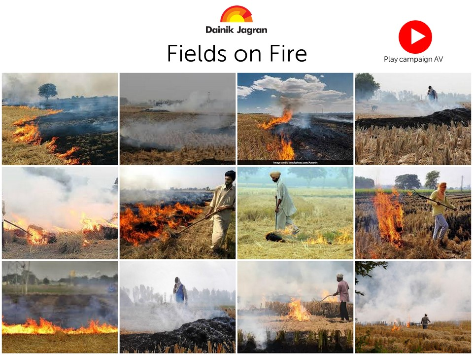 Fields on Fire