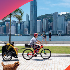 Holiday at Home: Hong Kong Tourism Board