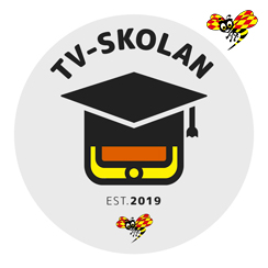 The TV school