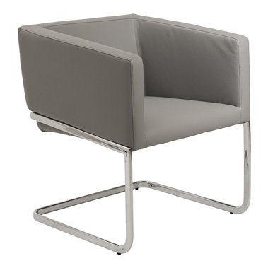Ari Lounge Chair