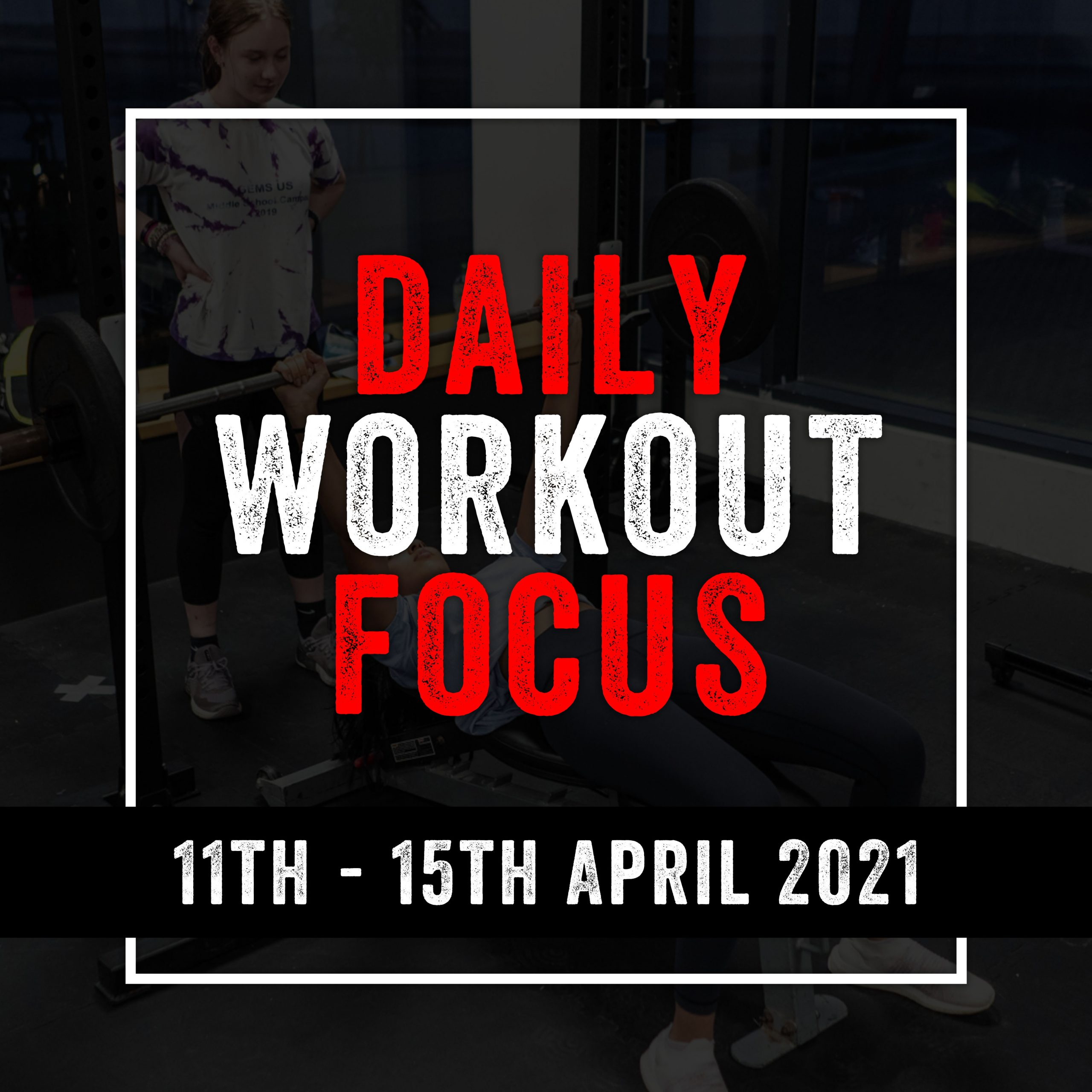 Daily Workout Focus