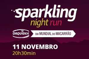 Sparkling Night Run 2017