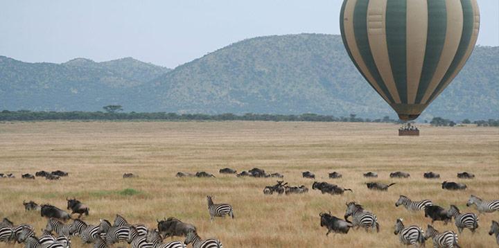 Safari, Tanzânia
