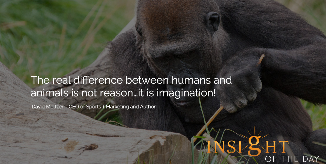 motivational quote: The real difference between humans and animals is not reason…it is imagination! David Meltzer – CEO of Sports 1 Marketing and Author