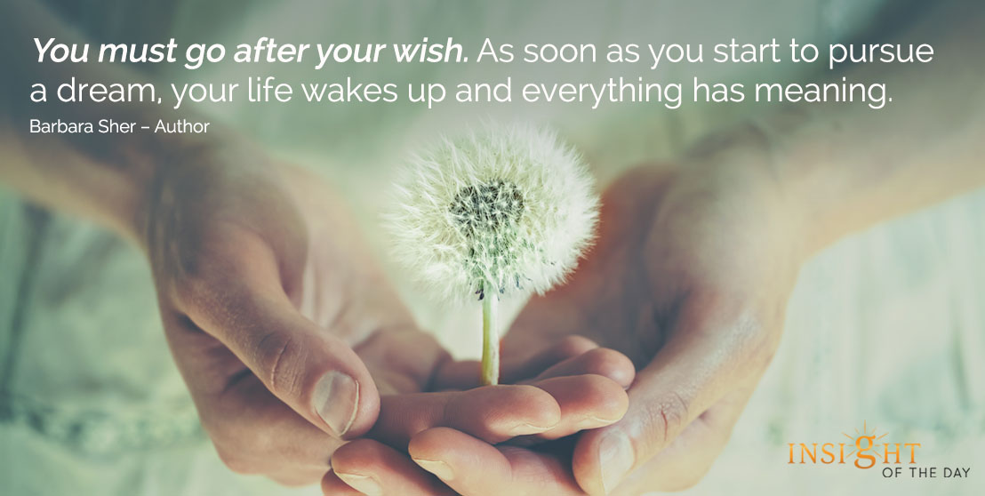 motivational quote: You must go after your wish. As soon as you start to pursue a dream, your life wakes up and everything has meaning. - Barbara Sher – Author