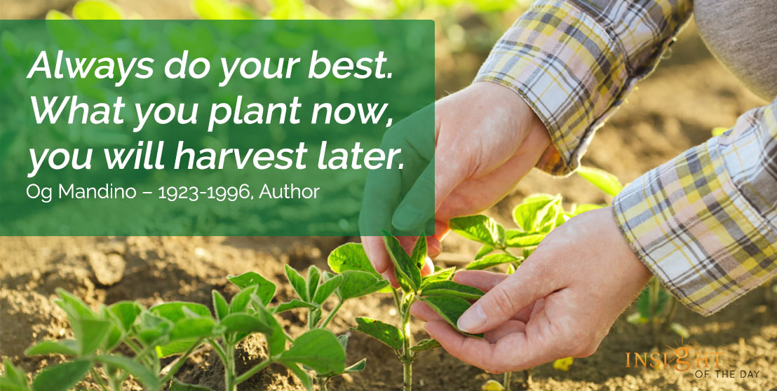 motivational quote: Always do your best. What you plant now, you will harvest later.  - Og Mandino – 1923-1996, Author