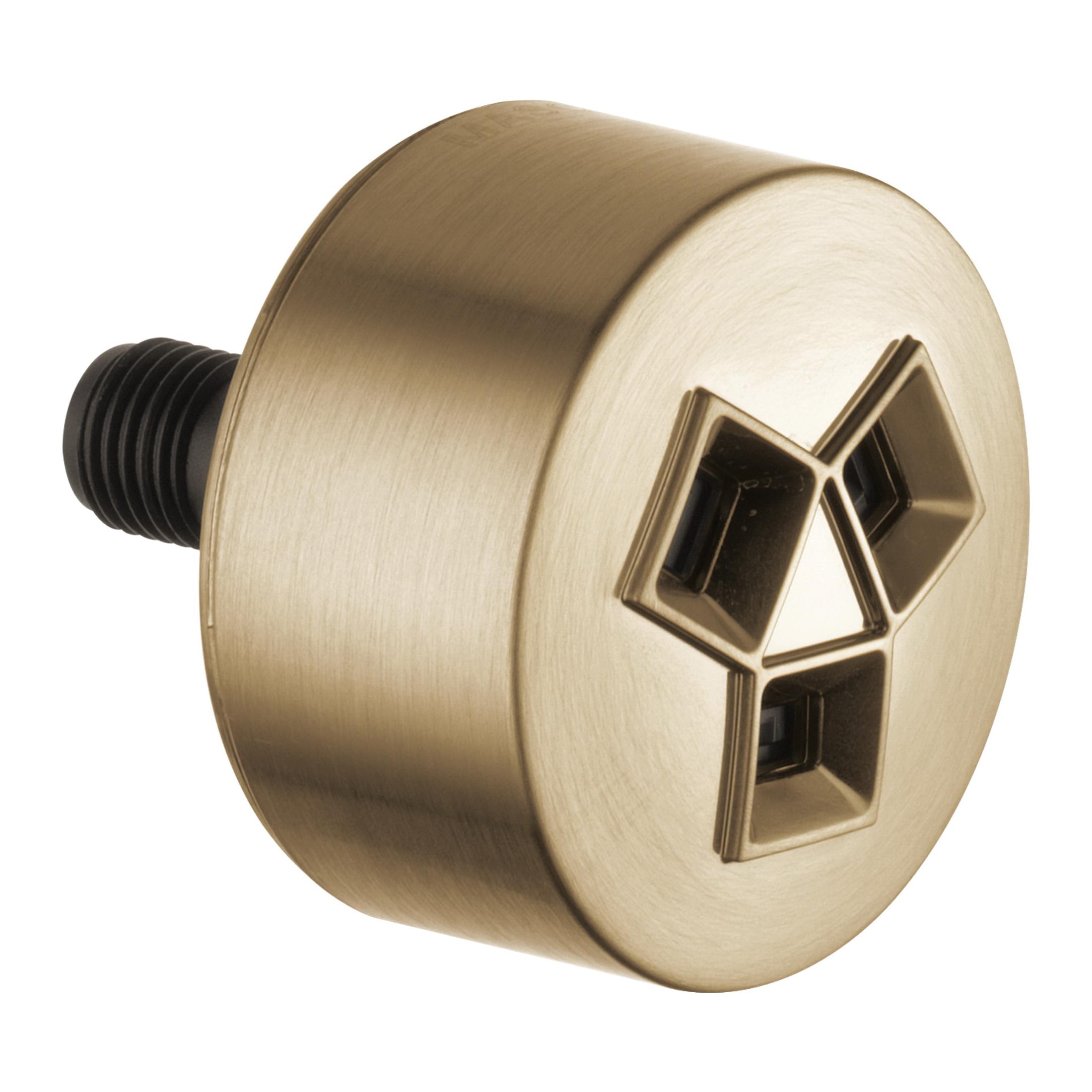 Brizo® HydraChoice™ Maximum SH84102-GL Body Spray Head, (1) Invigorating Spray, 1.5 gpm Maximum, Wall Mount, Import