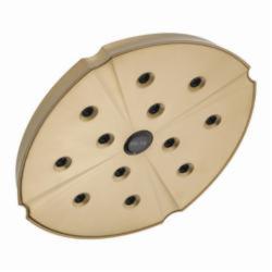 DELTA® RP61274CZ Single-Setting Raincan Shower Head, 2.5 gpm, 1 Spray, Wall Mount, Domestic